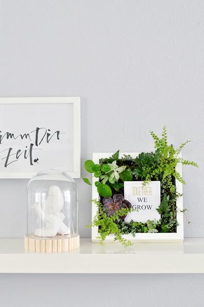 Bepflanzter_Bilderrahmen