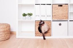 an diesem ikea hack hat nicht nur dein haustier tierischen spa new swedish design. Black Bedroom Furniture Sets. Home Design Ideas