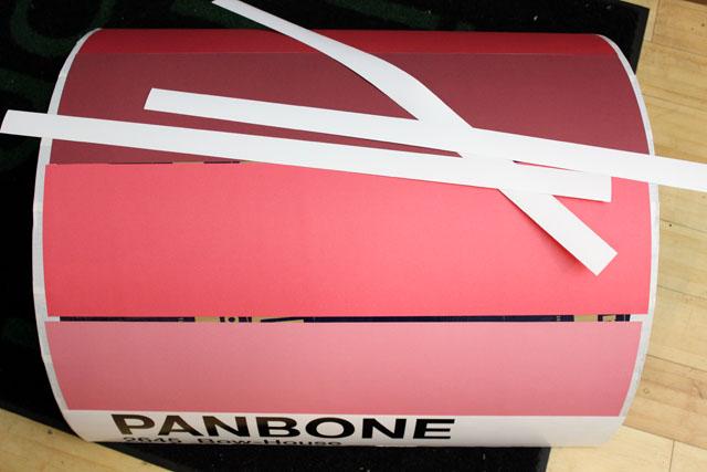 panbone9