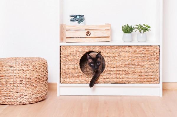 Der Seborg Katzenkorb passt perfekt ins Ikea Billy Regal