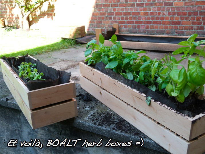 boalt-herb-boxes