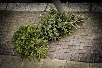 weihnachtsbaum-wegschmeissen-ikea