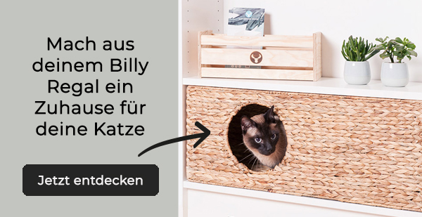 Katzenkorb-fuer-Billy-Regal