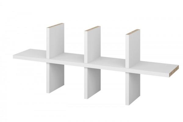 CD-Regaleinsatz für Ikea Billy Regal