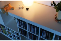 CD Einsatz für ©IKEA Expedit Regale